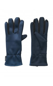 ADIDAS ClimaHeat Gloves Navy